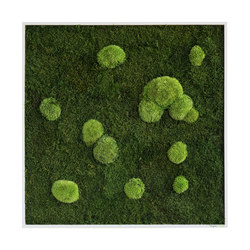 moss picture | pole and forest moss picture 80x80cm | Pareti vegetali | styleGREEN