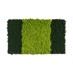 reindeer moss picture 100x60cm | Sound absorbing wall art | styleGREEN