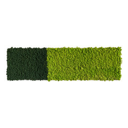 reindeer moss picture 140x40cm | Wall decoration | styleGREEN