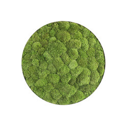 ellipsoid | pole moss 54cm | Wall decoration | styleGREEN