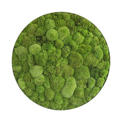 ellipsoid | pole moss 80cm | Living / Green walls | styleGREEN