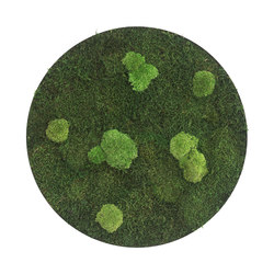 circle | forest and pole moss 80cm | Parades verdes / jardines verticales | styleGREEN