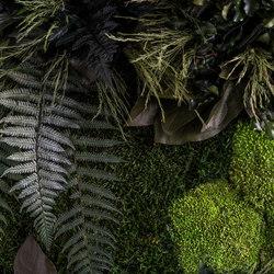 individual | greening plant Island | Living / Green walls | styleGREEN