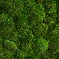 individual | greening pole moss | Wall decoration | styleGREEN