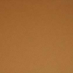 Platinum 14 | Upholstery fabrics | Flukso
