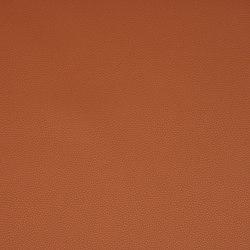 Platinum 15 | Upholstery fabrics | Flukso