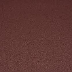 Platinum 16 | Upholstery fabrics | Flukso