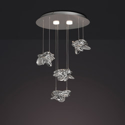 Nido 5903 | Suspended lights | MANTRA