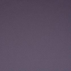 Platinum 38 | Upholstery fabrics | Flukso