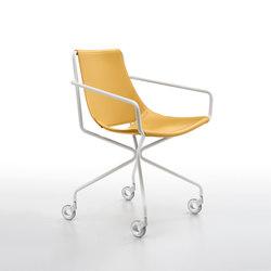 Apelle DP | Chairs | Midj