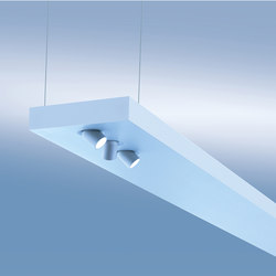 Plank P/U | Suspensions | Lightnet