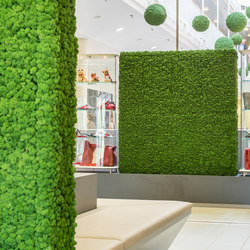 Evergreen Premium Moss | Space dividing systems | Freund