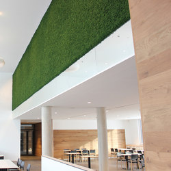 Evergreen Premium Moss | Wall panels | Freund