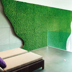 Evergreen Premium individually shaped | Living / Green walls | Freund
