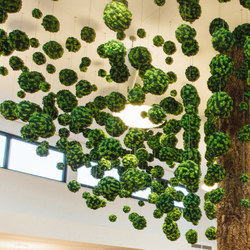 Evergreen Premium individually shaped | Sound absorbing suspended panels | Freund