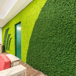 Evergreen Premium Moss color combinations | Wall panels | Freund