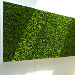 Evergreen Premium Moss color combinations | Paneles de pared | Freund