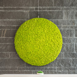 Evergreen Premium moss pictures | Sound absorbing wall objects | Freund