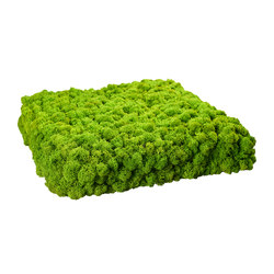 Evergreen Premium moss pictures | Sistemi assorbimento acustico decorazioni parete | Freund
