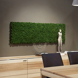 Evergreen Premium moss pictures | Sound absorbing wall art | Freund