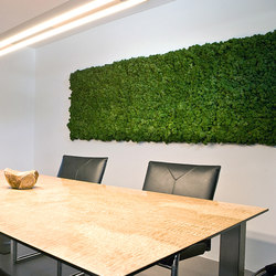 Evergreen Premium moss pictures | Sound absorbing objects | Freund