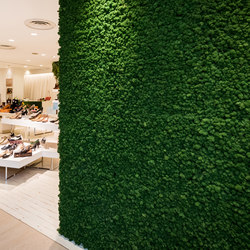 Moosgreen Flexible | Wall panels | Freund