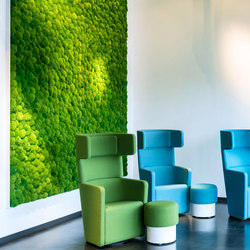 Greenhill Moss walls | Sound absorbing objects | Freund