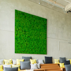 Greenhill Moss walls | Wall decoration | Freund