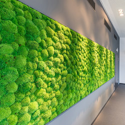 Greenhill Moss walls | Sound absorbing wall art | Freund