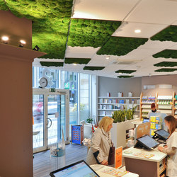 Greenhill Moss walls | Acoustic ceiling systems | Freund