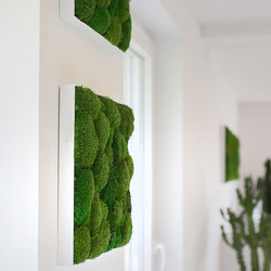Greenhill Moss Pictures | Sound absorbing wall art | Freund