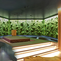 Greenwood Moss | Living / Green walls | Freund