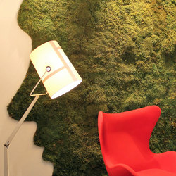 Greenwood Moss | Sound absorbing wall art | Freund