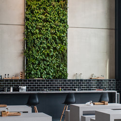Live Panel vertical garden | Sound absorbing wall art | Freund
