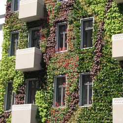 Live Panel vertical garden | Facade elements | Freund