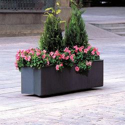 Lineal | Planters | Escofet 1886