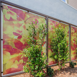 Perforated Metal Room Divider in Digital Imagery Collection Custom Art | Sheets | Moz Designs
