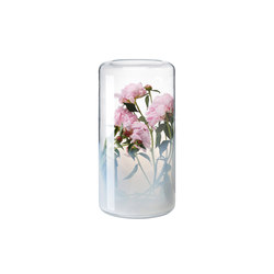Glasgow | Vases | Favius