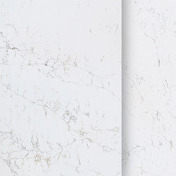 Unique Arabescato™ | Natural stone tiles | Compac
