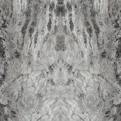 Amazzonia Grey | Quadri / Murales | TECNOGRAFICA