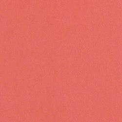 Rl202 Blossom   Upholstery fabrics   CF Stinson