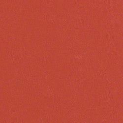 Rl205 Punch   Upholstery fabrics   CF Stinson
