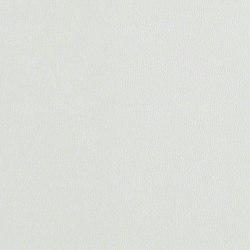 Rl206 Illusion | Cuir | CF Stinson