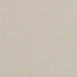 Rl209 Chinchilla   Upholstery fabrics   CF Stinson