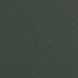 Rl217 Alpine   Upholstery fabrics   CF Stinson