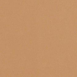 Rl218 Cashew   Upholstery fabrics   CF Stinson