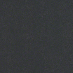 Rl221 Nightfall | Upholstery fabrics | CF Stinson
