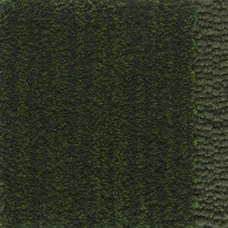 Classic | Forest Green 302 | Rugs / Designer rugs | Kasthall
