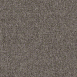 Haven | Upholstery fabrics | CF Stinson