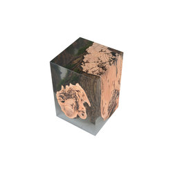 Undergrowth | Stump Stool Larch | Stools | Alcarol